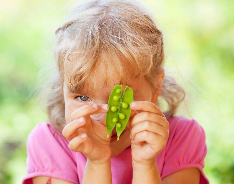 Princezna na hrášku – aneb domácí vzdělávání s hrachem setým